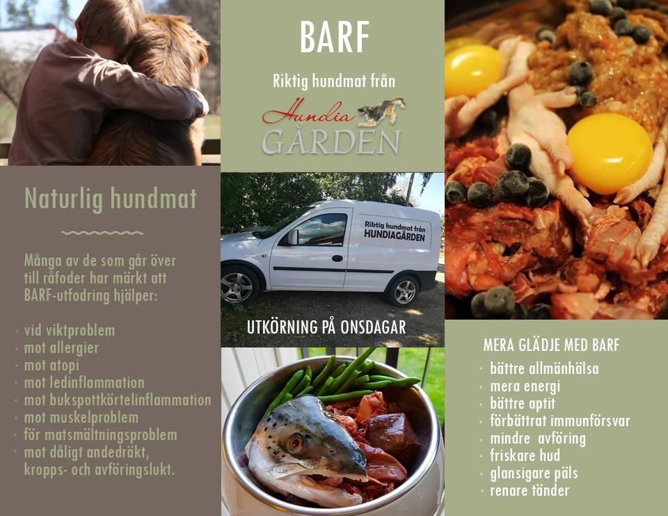 barf-info